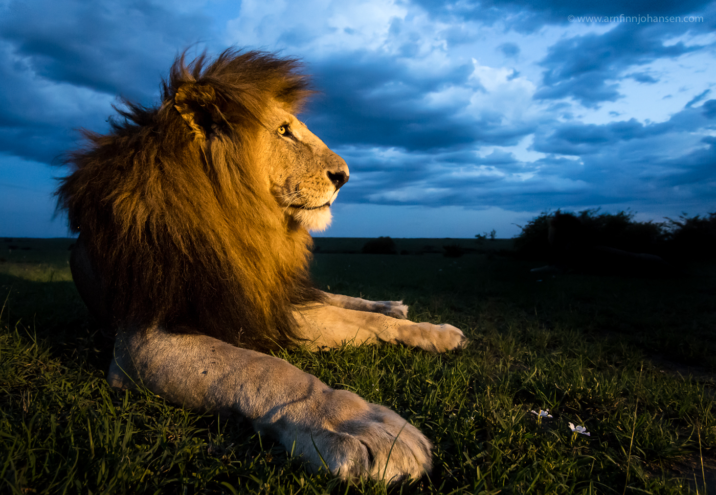 First Place In Nature's Best Photography Africa 2017